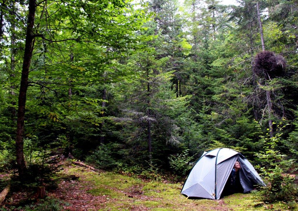 Parc national de la Mauricie, Québec, Canada