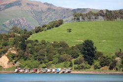 Akaroa - Nouvelle-Zélande