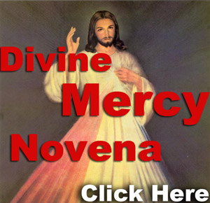 My Favorite Novena