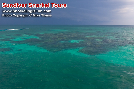 https://i1.wp.com/www.snorkelingisfun.com/images/Underwater_Photos/080607_White_Banks_091.jpg