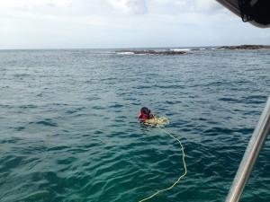Snorkelling on Arnos Vale Reef