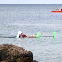 10 gode snorkleråd