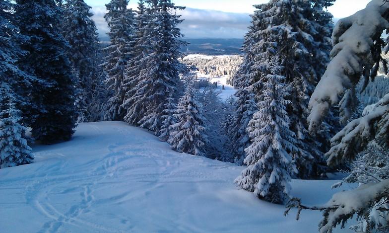 previsions de neige de les rousses a 1400 m