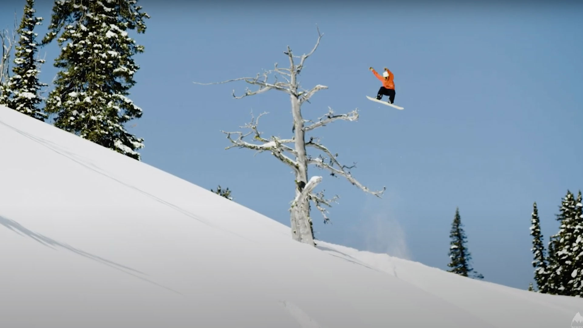 Snowboarder cover image