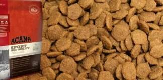 Acana Sport and Agility Dog Food