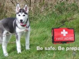 Husky First Aid Kit
