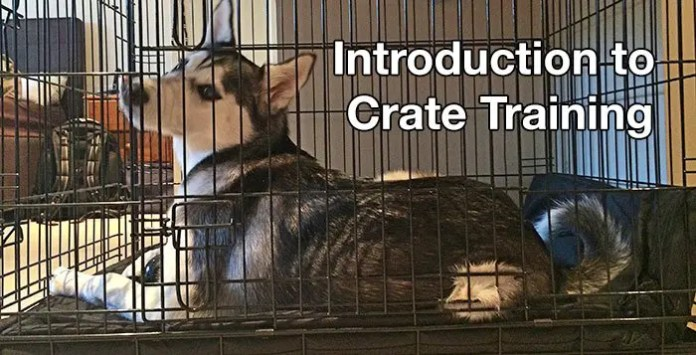 Introduction to create training
