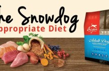 The Snow Dog Appropriate Diet