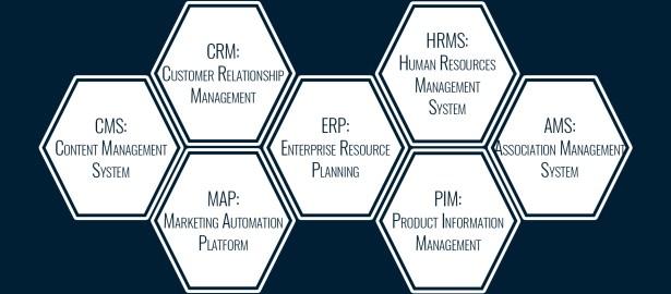 Software Development Services / SaaS