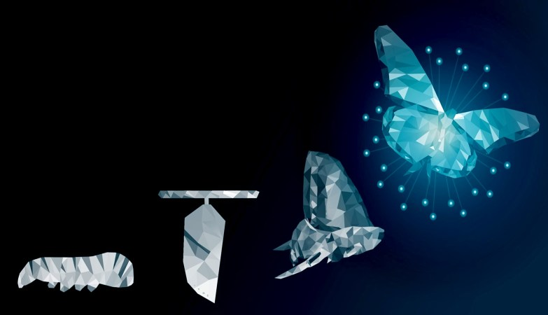 An Introduction To Four Diverse Tiers Of Digital Transformation And Which One Is Best For Your Company?