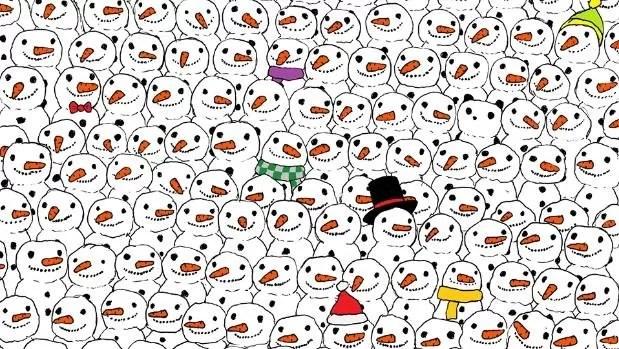Zie jij de panda?