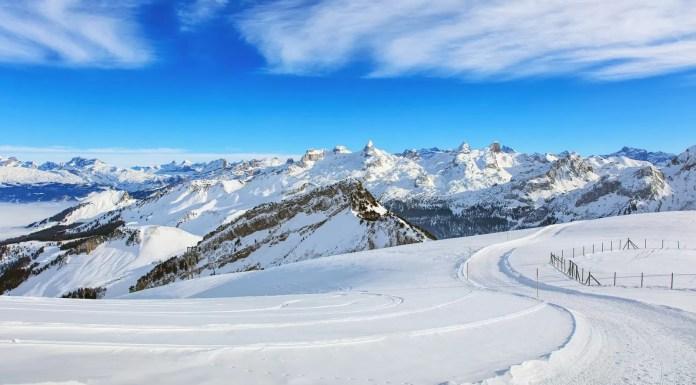 Ski Amade - Snowrepublic