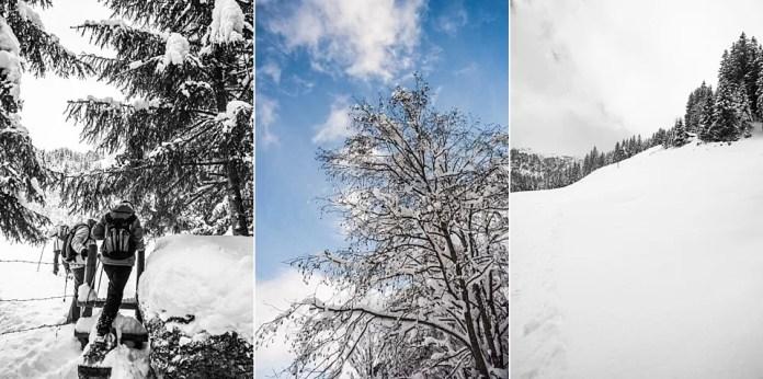 Uitzichten tijdens de sneeuwschoenwandeltocht. Eigen foto: Manja Herrebrugh, Snowrepublic