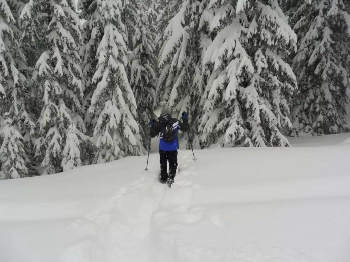 oostenrijk vorarlberg bregenzerwald