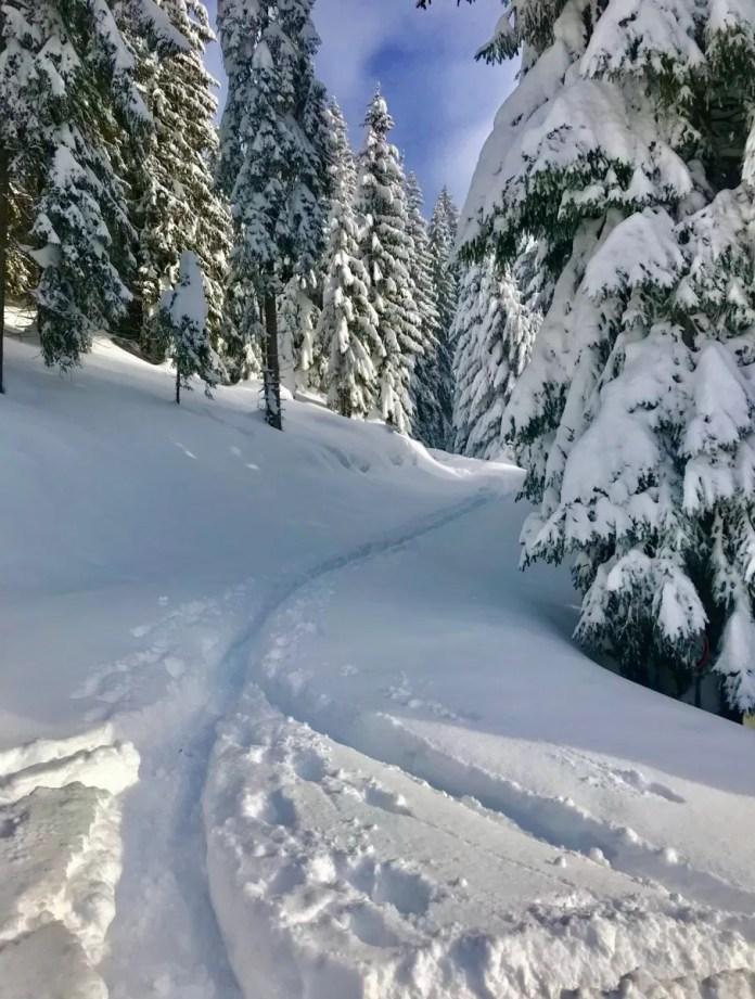 Genieten van de sneeuw
