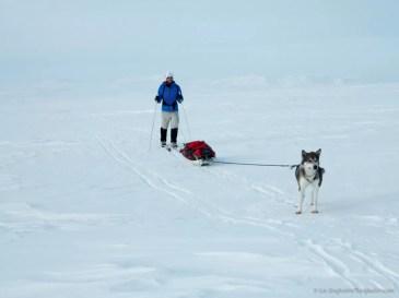 Nooit meer slapen, Finnmarkplateau Jolly Nomad 7