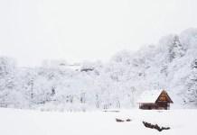 sneeuw kerst