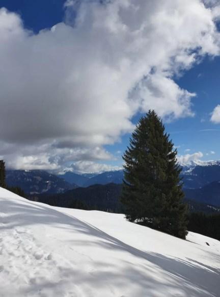 Laax, Zwitserland. Februari 2020. Foto: Francoise Faas-Vooren