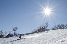 Manuela Berchtold skiing