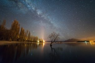 That Wanaka Tree Milky Way - JL
