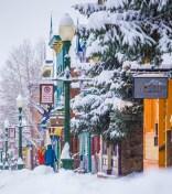 Chris_Segal-Elk_Ave_with_snow_638x720_72_RGB