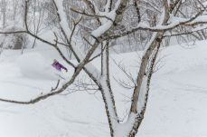Photo by Zach Paley at Niseko Photography