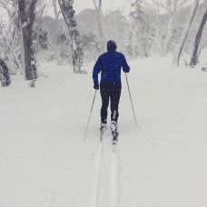 When the lifts closed @vincecarlsen went XC skiing