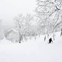 Image from Miyuki Snowsports