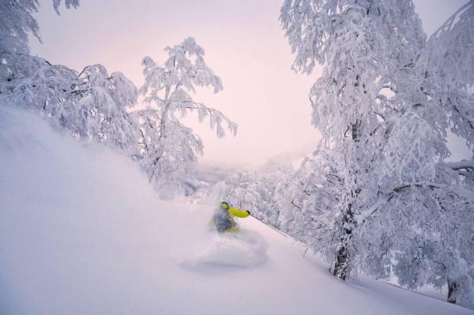 nozwa snow