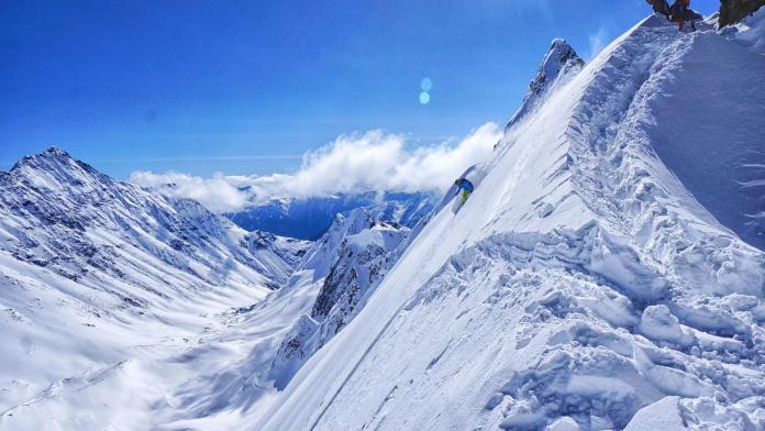 bella coola steeps