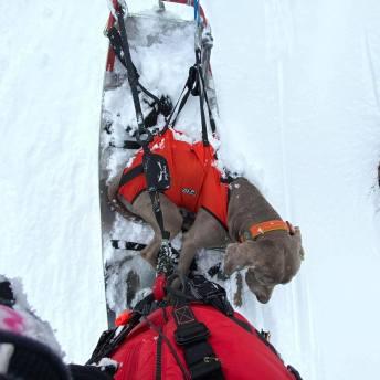 solden ski patrol