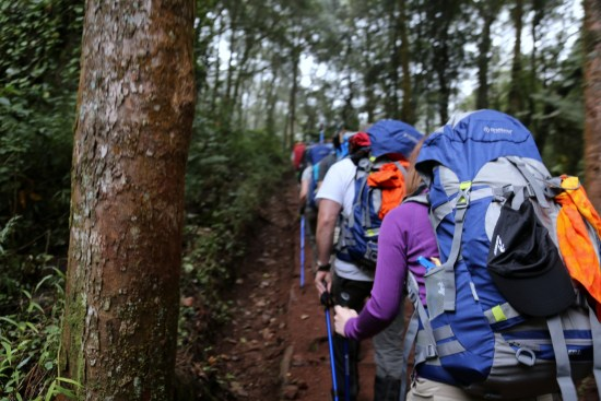 "In July 2014, Dr. Ellen Marmur and a team launched a climb up Africa's Mt. Kilimanjaro to raise awareness of the American Academy of Dermatology's SPOT Skin Cancer initiative. With Starglazer backpacks providing their trail support for this expedition, the climb worked a six-day climb to the mountain's 19,341 peak, the highest free-standing summit in the world. Talk about ""Go Tell it on the Mountain;"" this is it! You can participate; learn how at the end of this article. You will be telling ""Skin Cancer, Take a Hike!""™"
