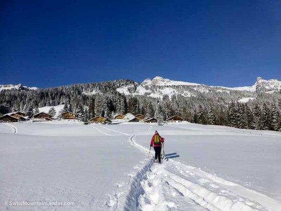 29 Dec 2014 - the village of Leysin, Swiss Alps