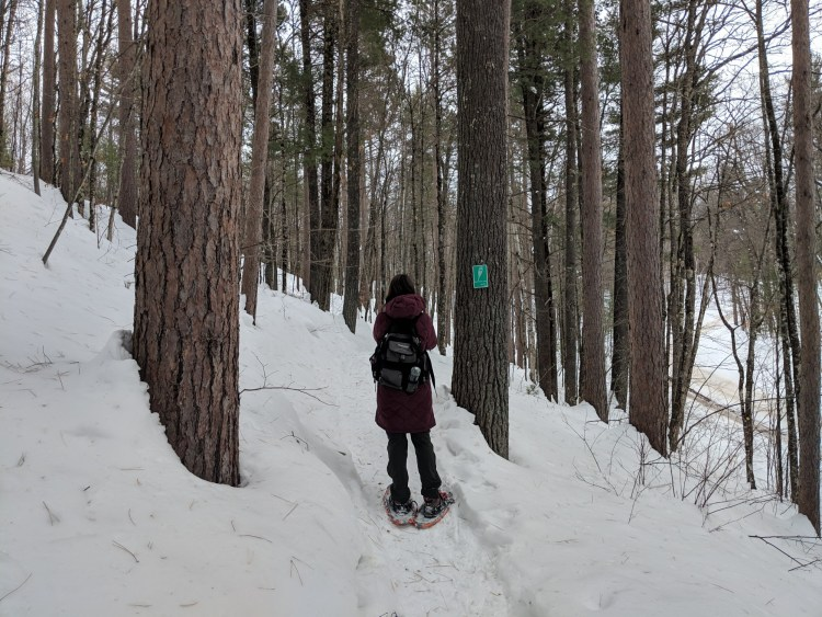 woman snowshoeing in trees
