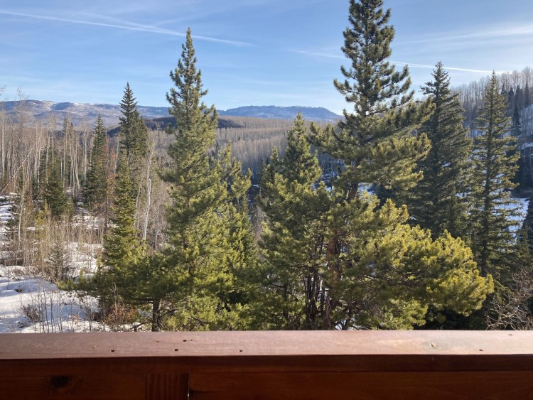 view from balcony at Wild Skies Cabin in Colorado wilderness -trees mountains and open sky in background