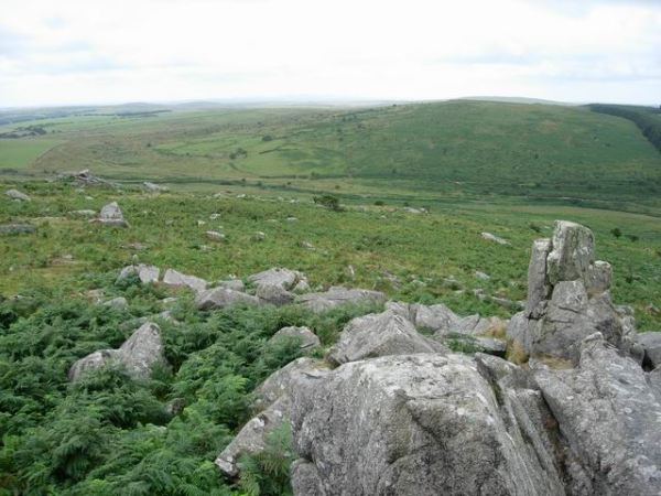 """Bodmin Moor hillside - geograph.org.uk - 222668"" by Hugh Venables"