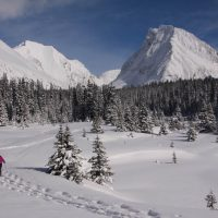 Top Winter Hiking Trails in the Canadian Rockies
