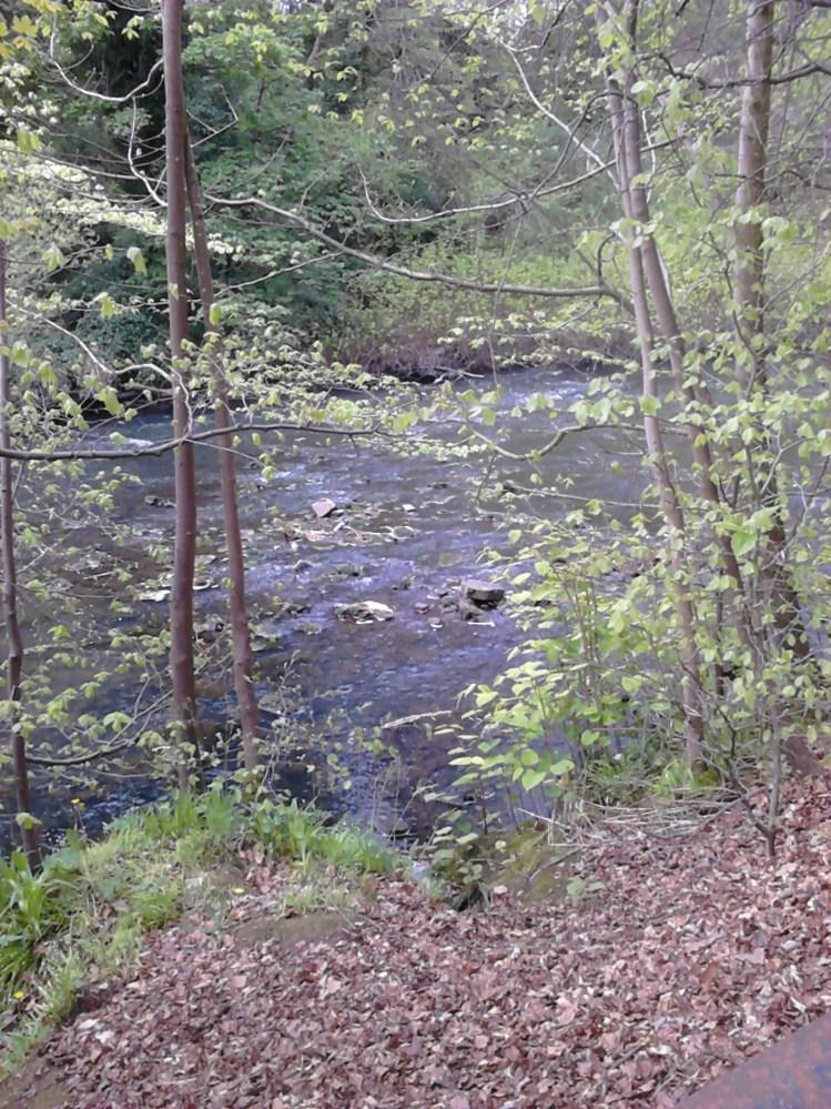 Kelvin River in Glasgow