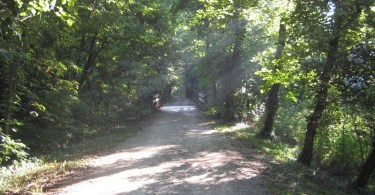 trail surrounded by forests (MKT Trail in Columbia MO)