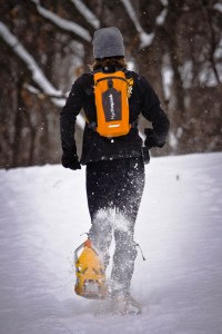 Using the Sequel while Snowshoeing