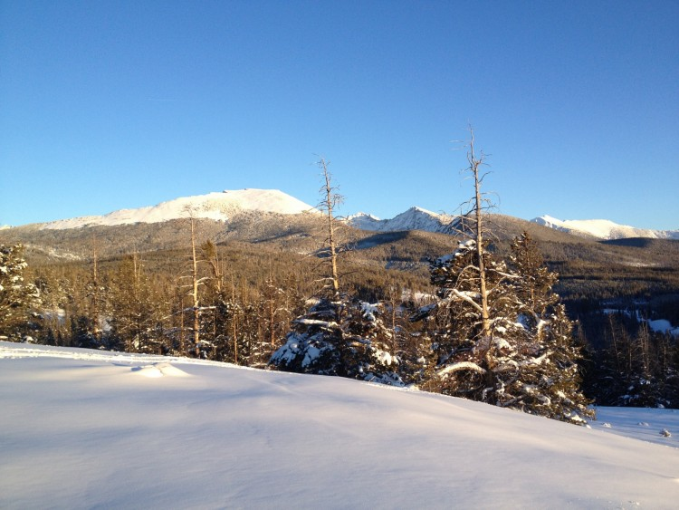 snow covered hill with trees and Pioneer peaks in the background