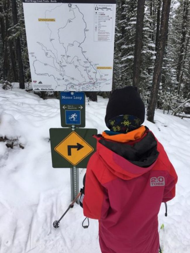 person looking at a trail sign and map