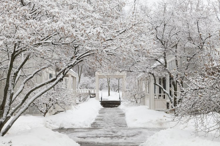 winter at Cornell University in Ithaca NY