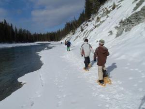 Junior snowshoers trek along the Kootenay River.