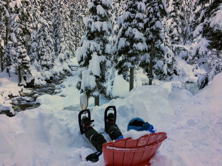 child sitting on a hill looking at a river on a chair in the snow