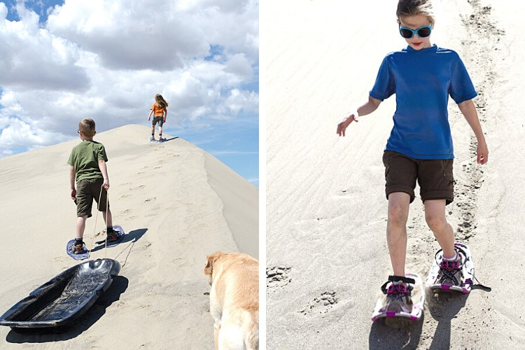 L: kids on snowshoes on sand with sled and dog R: child walking down sand dune on snowshoes
