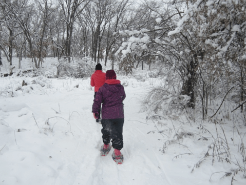 Adaptive winter sports for people with disabilities