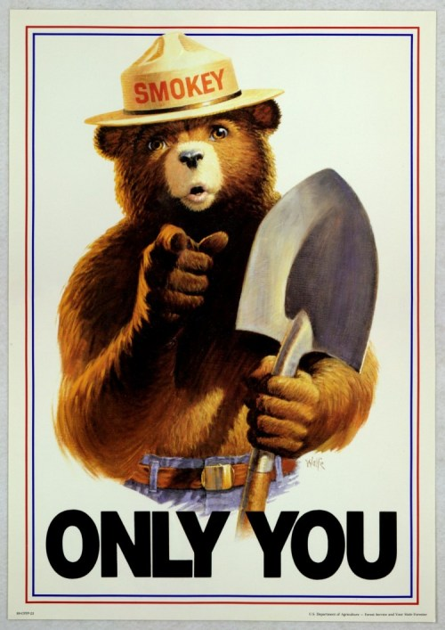 Smokey the bear poster