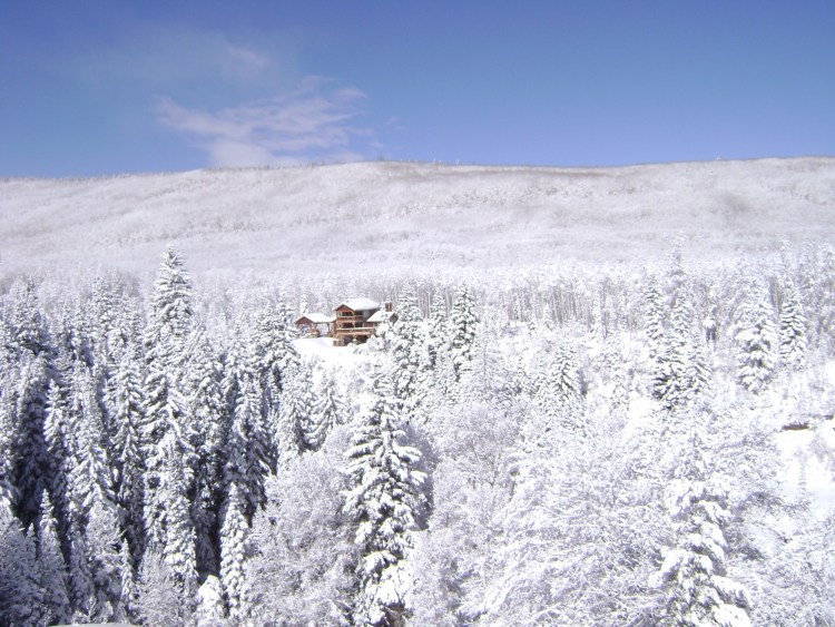 cabin in Colorado wilderness surrounded by snowy trees