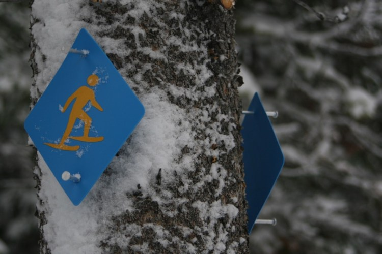 reflective snowshoe signs